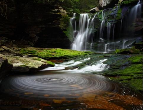 Elakala Summer Waterfalls Blackwater Lodge