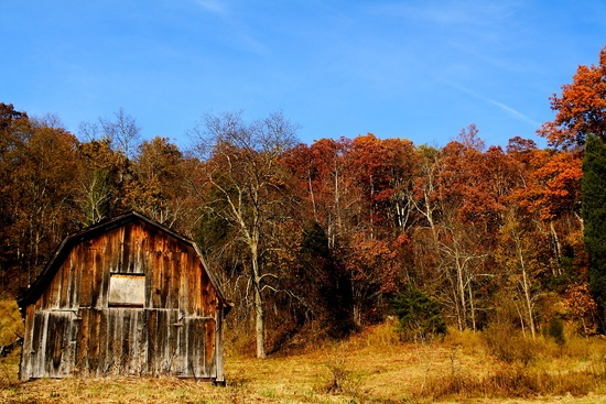 Autumn Country Barn Fall Leaves Sky