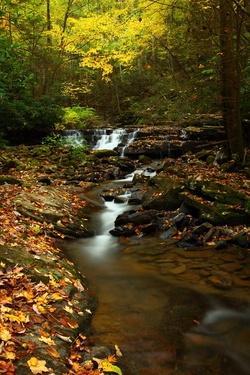 Autumn Creek Waterfalls Fall Foliage Leaves