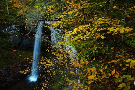 Autumn Leaves Rock Cliff Beautiful Waterfalls Wv