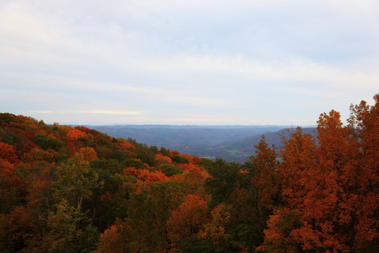 Highland Mountain View Fall Foliage