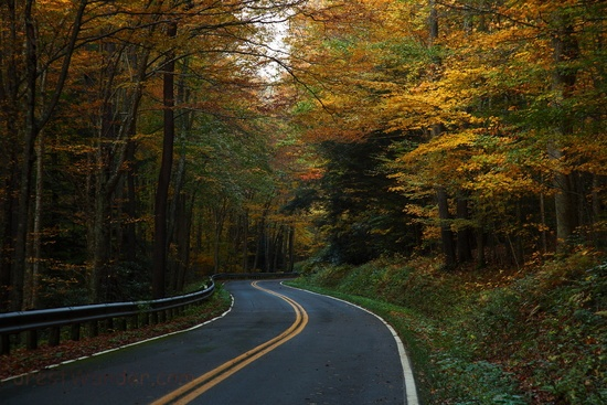 West Virginia Winding Autumn Trees Country Road