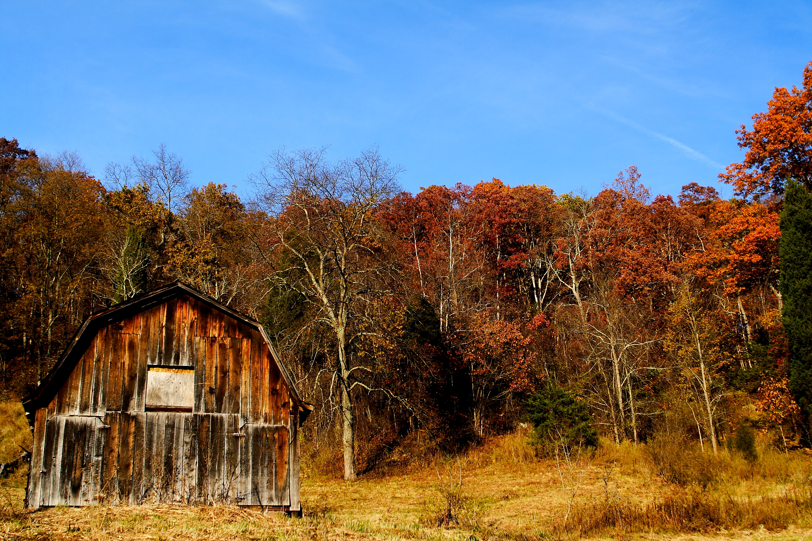 Country Barn Backgrounds